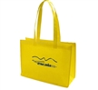 Promotie Non-Woven Shopping Bag
